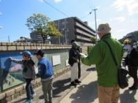 元助任川堤防の桜並木の解説